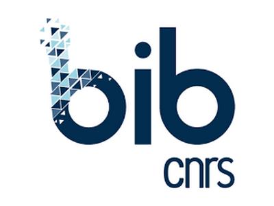 bib_cnrs.png