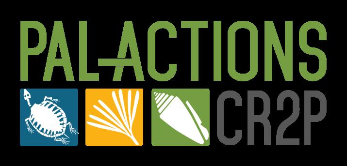 pal-actions_logo.png